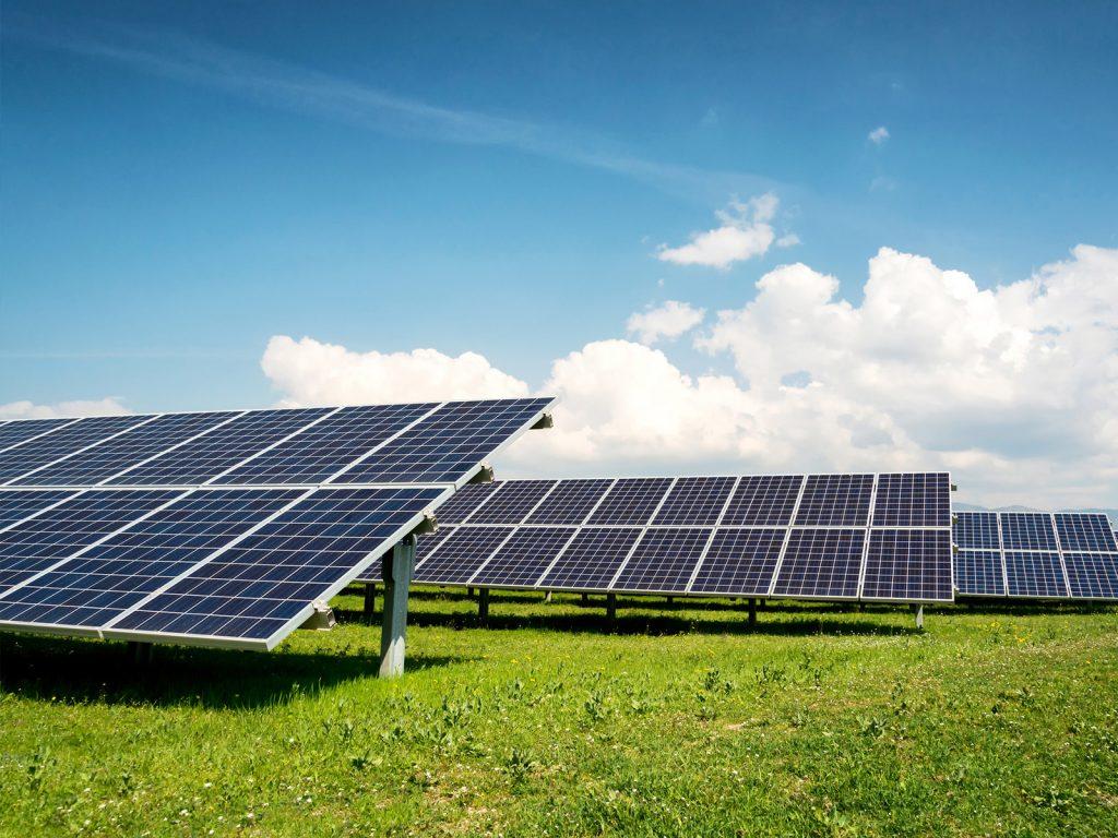 Solar Panels on a grassy farm field