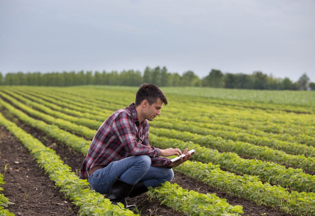 Farmer with tablet